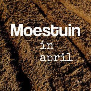 moestuin in April
