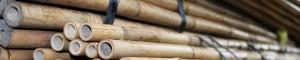 cropped-bonenstaken-tonkinstokken-bamboestokken1.jpg
