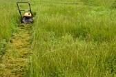 3383532-een-grasmaaier-op-het-grasveld-in-de-middag