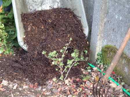 7271-compost