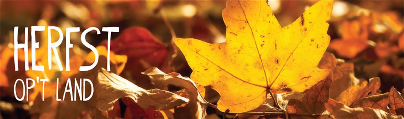 herfst-medium