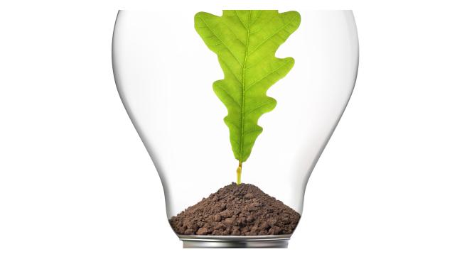 groen idee