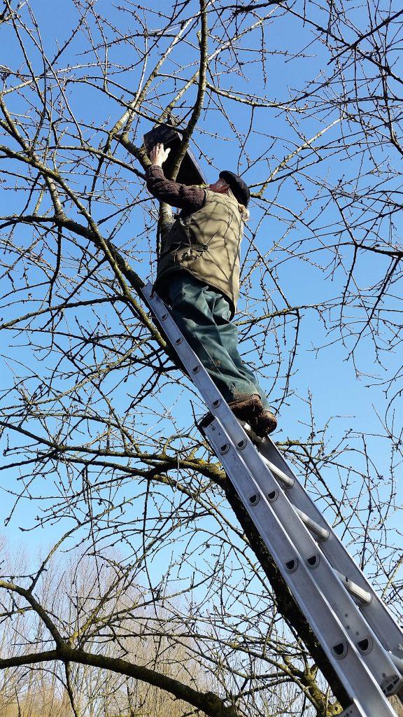 Ophangen uilenkast volkstuinders Doesburg